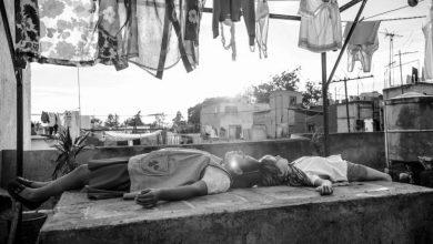 صورة أجندة عروض الأفلام بدار الأوبرا الخميس 22 نوفمبر بالقاهرة السينمائي