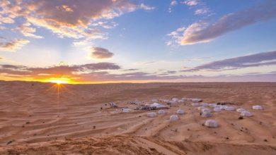 """صورة اليوم ينطلق """"الهيبي"""" في عمق الصّحراء التّونسية"""