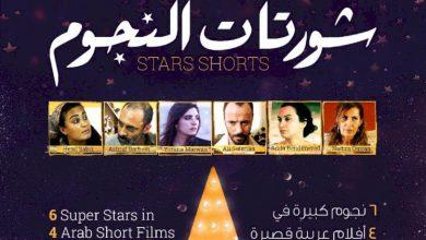 صورة أفلام شورتات الأوسكار وشورتات النجوم في مكتبة الإسكندرية