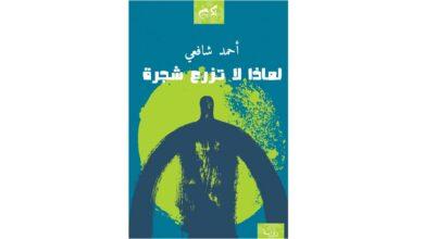 صورة لماذا لا تزرع شجرة.. رواية أحمد شافعي الجديدة